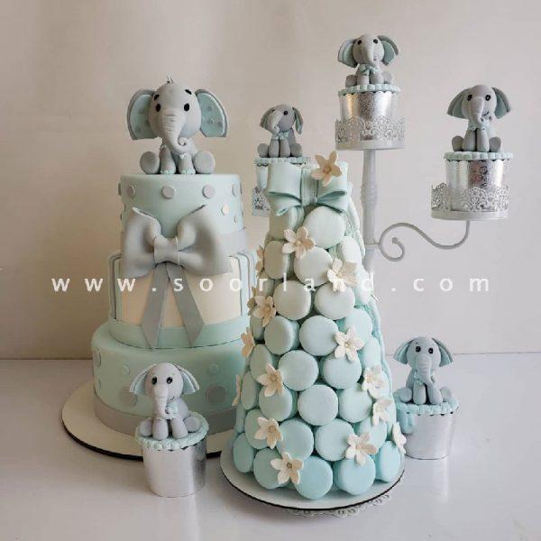 اجاره ماکت کیک